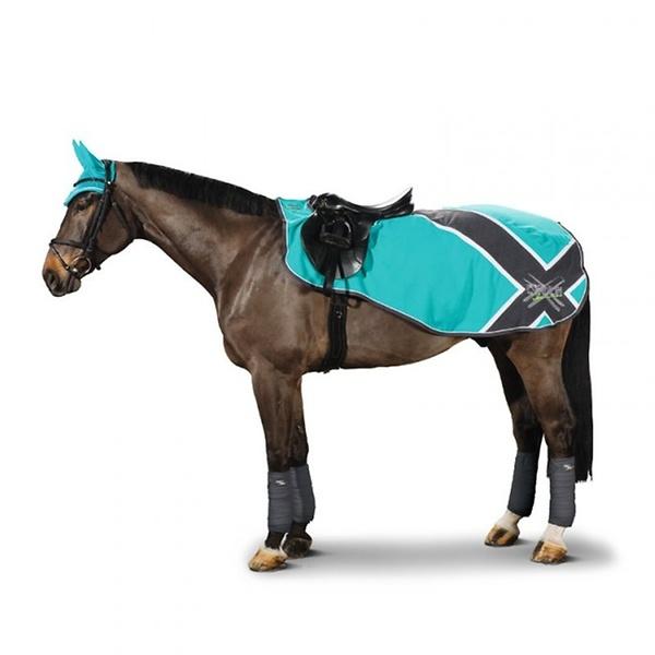 Mit einer schönen Nierendecke ist das Pferd beim Einschritten optimal vor der Kälte geschützt.