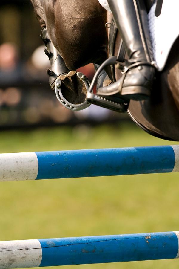 Springreiten: Elite-Kader für 2015 ist bestimmt