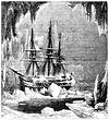 Cook stößt auf Eisberge