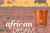 evoka marionnaud african dream