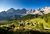 Neustattalm Ramsau am Dachstein