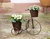 Pflanzer Dreirad