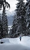 Schneeschuhwandern auf die Williamshütte