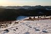 Schneeschuhwandern im Südschwarzwald