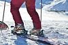 Ski und Bindung kombinieren