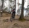 Steven beim Downhill im Wald