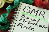 What is the Basal Metabolic Rate?