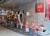 Our Flamingo Window - STEFFL Sale