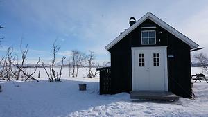 Stacey in Schwedisch-Lappland